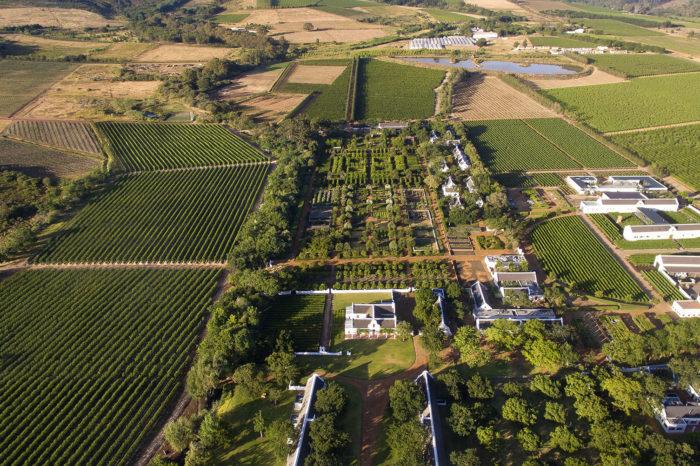 Babylonstoren Wine Estate