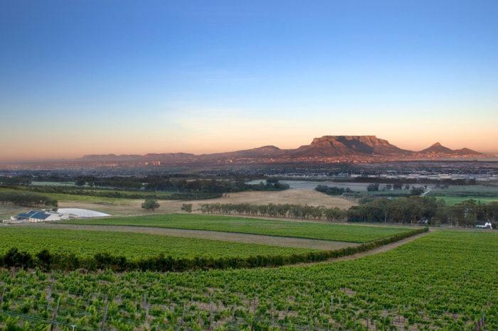 De Grendel Wine Estate Experience